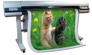 indoor printer, เครื่องพิมพ์หน้ากว้าง