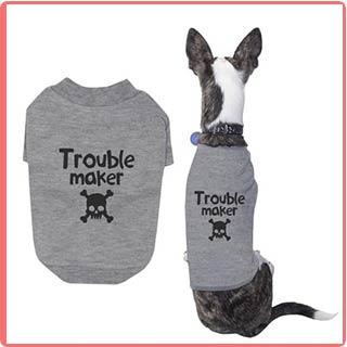 พิมพ์เสื้อสุนัข-เสื้อหมา-เครื่องพิมพ์เสื้อ