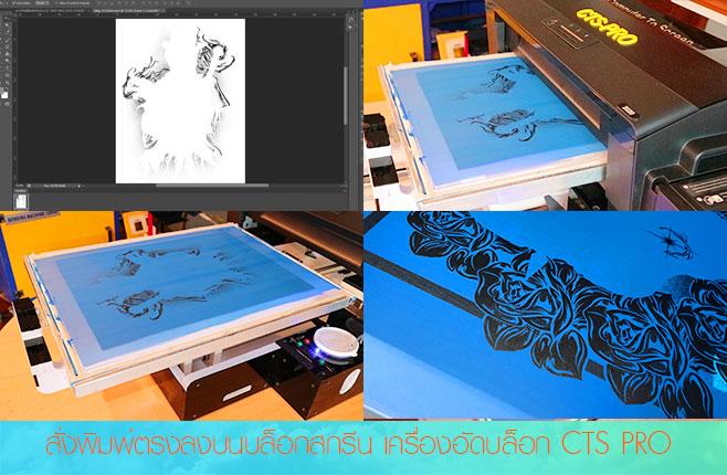 เครื่องอัดบล็อกสกรีน-cts-printer-การพิมพ์บล็อก