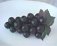 dark-grape อางุ่นดำ ส่วนประกอบสำคัญเอเจล เอ็กซ์โซ Agel EXO-ปวดประจำเดือน-มะเร็งมดลูก-อาหารเสริม-agel-เอเจล-เอ็กซ์โซ