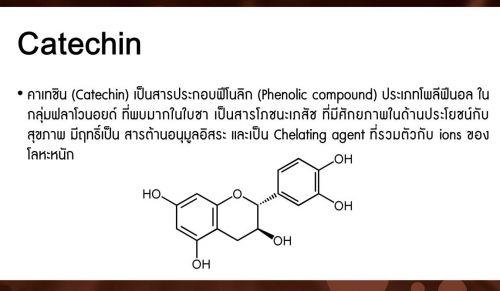 คาเทชิน catechin สารประกอบฟีโนลิก  ต้านมะเร็ง ต้านโลหะหนัก