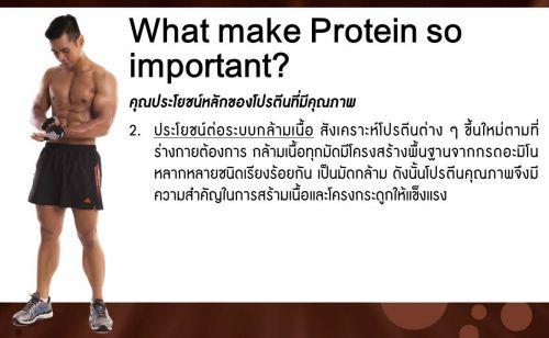 ประโยชน์หลักของเอเจล โปรตีนต่อสูขภาพ