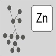 ซิงค์ อะมิโน แอซิค คีเลต (Zing Amino Acid Ahelated)