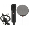 sE Electronics sE2200A MKII Multi-pattern Condenser Microphone