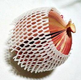 P1888-3 กระดาษโน้ตรูปผลไม้-ทับทิม กระดาษโน้ตรูปผลไม้ กระดาษโน้ต กระดาษบันทึก MEMMO กระดาษ