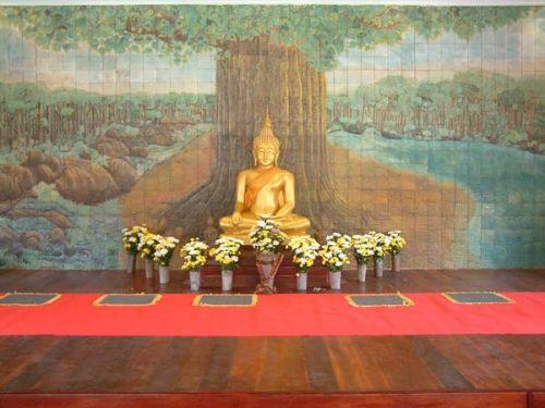 BuddhaMetta