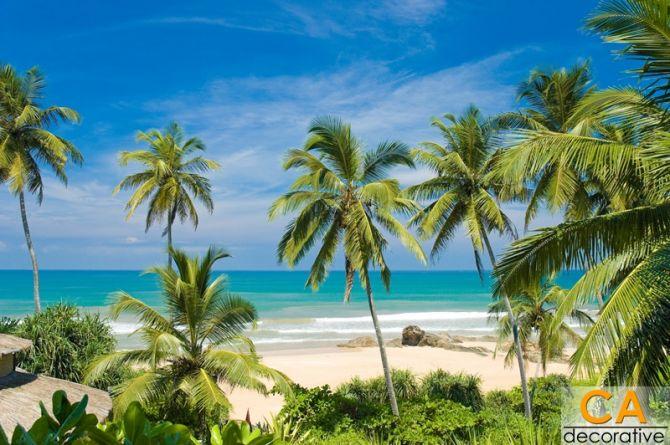 ภาพวิวชายหาดที่สวยงาม