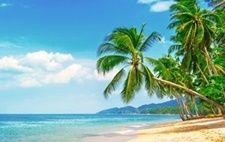 ภาพวิวชายหาดทะเลสวยน้ำใส_Photowall