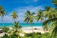 ชายหาดสวยๆ_photowall