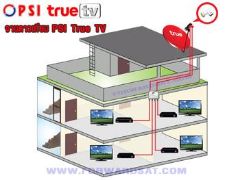 จานดาวเทียม PSI True TV