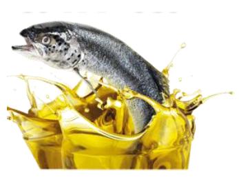 น้ำมันปลา ยี่ห้อ