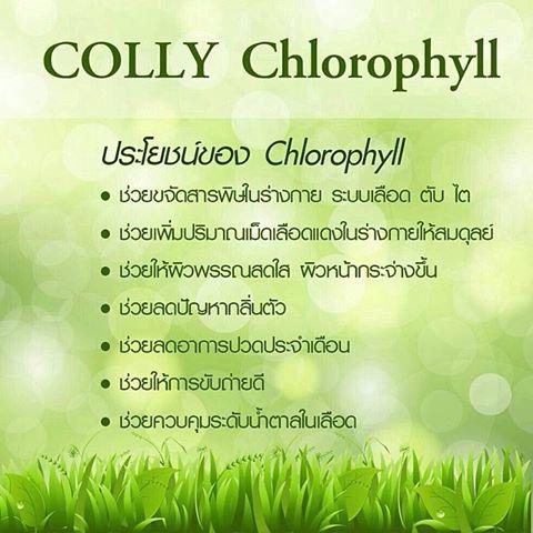 Colly Chlorophyll, Colly Chlorophyll ราคา, ราคา Colly Chlorophyll, Colly Chlorophyll รีวิว, รีวิว Colly Chlorophyll, Colly Chlorophyll ของแท้, คอลลี่ คลอโรฟิลล์ ไฟเบอร์ พลัส, คอลลี่ คลอโรฟิลล์ ไฟเบอร์ พลัส ราคา, ราคา คอลลี่ คลอโรฟิลล์ ไฟเบอร์ พลัส