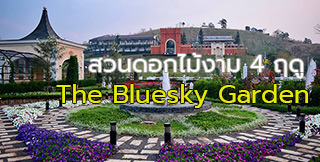 The bluesky garden khaokho