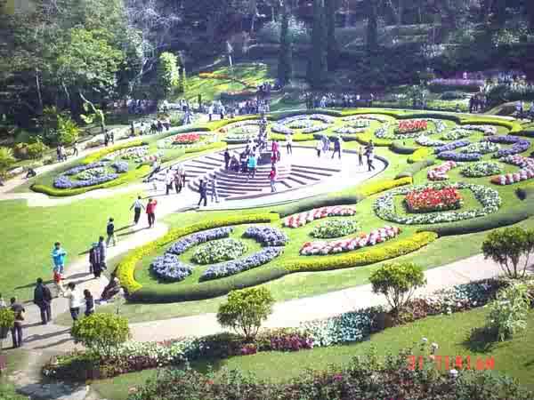 สวนแม่ฟ้าหลวง,mahfahluang chiangrai