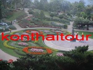 ดอยตุง เดินชมพระตำหนักสมเด็จย่าของปวงชนชาวไทย และเดินรอบๆ สวนแม่ฟ้าหลวงที่ปลูกไม้เมืองหนาวหลากหลายพันธุ์