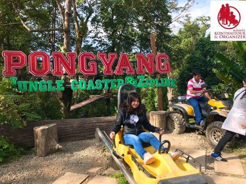 Pongyang Jungle Coaster & Zipline ,Chiang Mai