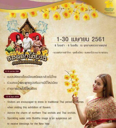 คนไทยทัวร์ แนะนำ เทศกาลชมดอกไม้บาน งามวัฒนธรรมไทย ตลอดเดือนเมษายนนี้  ณ อุทยานหลวงราชพฤกษ์  เชียงใหม่