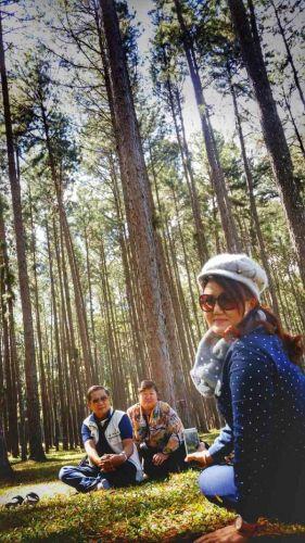 สวนสนบ่อแก้ว Bo Kaeo Pine Tree Garden or Suan Son Bor Kaew