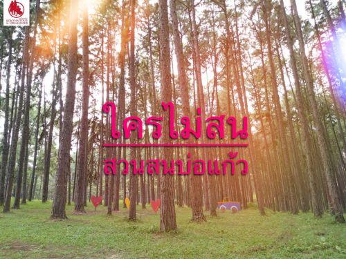 "💃 สวนสนบ่อแก้ว Bo Kaeo Pine Tree Garden or   Suan Son Bor Kaew ในวันที่ฝนอ่อย  ธรรมชาติกำลังเขียวขจี เป็นภาพที่วิเศษและโรแมนติกมาก ทิวสนทอดยาวไปสุดลูกตา ปะทะกับสายหมอกสีขาวลอยต่ำ เมื่อถ่ายภาพออกมาจะได้ความประทับใจกลับไปแน่นอน  🔅 หมายเหตุ : ขอบอกเลยว่ามันควรค่าแก่การไป ชมความ งดงาม มีเสน่ห์ จริง ๆ  ช่วงนี้ คนไม่เยอะ ถ่ายรูปได้เต็มที่  www.konthaitour.com/index.php?lay=show&ac=article&Id=540025060&Ntype=34  🛑🛑🛑🛑🛑🛑🛑🛑🛑🛑🛑🛑🛑🛑🛑🛑🛑🛑🛑🛑🛑 👉 Konthaitour / The Luxury Private Tour Operator Specialty base in Chiang Mai, Thailand.  🌷 บริษัททัวร์ชั้นนำเชียงใหม่  📜TAT NO.21/00777  👍 จัด โปรแกรม Package Tours ต่าง ๆ ทั่วภาคเหนือ และหลวงพระบาง เมืองมรดกโลก ประเทศลาว แบบคุณภาพ ทัวร์ส่วนตัวทุกคณะ  🌷 เราพร้อมดูแล ตั้งแต่ท่านติดต่อมา จนถึงส่งท่านกลับพร้อมความสุข  ✅ เรามีกฏเหล็กให้ทีมงานคนไทยทัวร์ คือ ทำอย่างไรก็ได้ให้ลูกค้ามีความสุขที่สุดในการท่องเที่ยว  🔥 หมายเหตุ : ทุกคณะเป็นทริปส่วนตัว ไม่มีทัวร์จอย จ่ายเงินรอบเดียว เรารวมให้หมดทุกอย่าง  * ยกเว้นตั๋วเครื่องบิน ‼️ คุ้มค่า ไม่ผิดหวังแน่นอน  👉 จองแพ็กเก็จทัวร์ ☎ : 063-7892562 ,089-5987492  Line id : @konthaitour  www.konthaitour.com ( Thai ) www.konthaitours.com ( Eng )  ฝากกดเลือก!! See First ในปุ่ม Following แล้วท่านจะไม่พลาดโอกาสดี ๆ จาก ""คนไทยทัวร์ "" เจ้า  Youtube : www.youtube.com/user/danktt1/videos  #สวนสนบ่อแก้ว #ทริปส่วนตัว #บริษัททัวร์ชั้นนำเชียงใหม่"