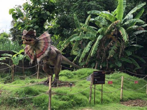 🔥คนไทยทัวร์ พาเที่ยว หมู่บ้านลึกลับ เมืองไดโนเสาร์ เชียงใหม่  🔥  ที่จะทำให้คุณตื่นตาตื่นใจไปกับ ธีมพาร์คการจำลองโลกไดโนเสาร์ ย้อนเวลาไปวัยเด็ก ยอมรับเลย ว่าเพลินไปอีกแบบ ปลดปล่อยชีวิตบ้าง น่าจะดี ครับ   ‼️ ที่เที่ยวนี้เหมาะสำหรับครอบครัว เพิ่มประสบการณ์ให้กับเด็กๆ ครับ  สามารถนำมารวมในแพ็กเก็จทัวร์ได้เลย  Chiang Mai's newest attraction is a fantastic park at The hidden dinosour village Chiang mai  It is a great park for a family with kids .A new theme park of amazing dinosour and Giant Bugs, Adventure Playground and Moving, Roaring Dinosaurs  Let's explore inside are waiting to welcome you all with Konthaitour