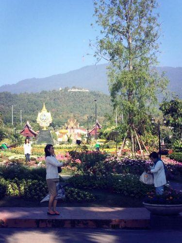 Mr.Konthaitour พารับลมหนาวแรก ที่พืชสวนโลก / Royal Flora Festival  , Chiang Mai