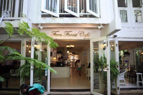 🌿คนไทยทัวร์ ขอเล่าเรื่อง หากคุณลูกค้ากำลังมองหาร้านกาแฟ ร่มรื่นด้วยต้นไม้นานาพันธุ์ ป่าเฟิร์น ใจกลางเมืองเชียงใหม่  นั่งพักผ่อนเย็นๆ เหมือนเป็นโอเอซิสกลางทะเลทราย เชียงใหม่  🐋วันนี้ทีมงาน มีร้านเด็ดๆมาแนะนำกันเจ้า  😊Fern Forest Cafe ,Chiang Mai  (เฟิร์นฟอเรสต์คาเฟ่) ชุ่มชื้นสวยงามตามท้องเรื่อง 🐋 เป็นอีกหนึ่งร้านในเชียงใหม่ ที่จะเอาไว้รับแขกผู้มาเยือน   ที่นี่จะทำให้รู้สึกว่าหลุดเข้ามาอีกโลกนึงเลยเพียงแค่ก้าวเข้ามาในร้าน   🐋 เอาเป็นว่าหากใครมาเที่ยวเชียงใหม่ แล้วอยากได้คาเฟ่สวยๆ ไว้่ถ่ายรูปเล่น ลองแวะมาที่ Fern Forest Cafe ดูนะเจ้า ขอบอก
