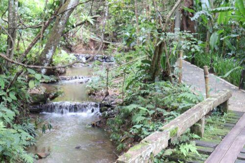 คนไทยทัวร์ พาไปฟิน ที่  พราวภูฟ้า รีสอร์ท  จ.เชียงใหม่  นอนโอบกอดธรรมชาติ  ขุนเขา และสายน้ำ สไตล์ ฮิป แอนด์ กรีน