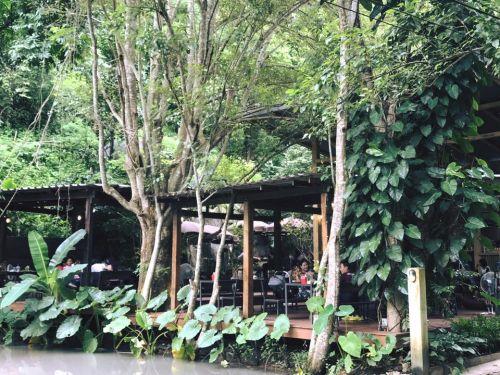 ❤️ คนไทยทัวร์ พาเที่ยว พาชิม ที่ The cave doikam Chiang Mai เปิดตัวมาไม่นานสำหรับร้านนี้ บรรยากาศธรรมชาติสุด ๆ แต่งร้านอิงแอบกับธรรมชาติมาก และ นักดนตรีบรรเลงเพลง กล่องเสียงเบาๆ ได้เป็นอย่างดี  พอย่างแรกมาถึงร้านก็ ตกใจ คนเยอะมาก แต่พอมานั่งแล้ว ใจรู้สึกผ่อนคลายมากอย่างบอกไม่ถูก ด้วยเพลงของนักดนตรี เสียงน้ำที่ไหลผ่าน และ ยังเห็นหินก้อนใหญ่ มาก หรือ จะนั่งชิวๆ ริมน้ำตก น่าจะสวยไปอีกแบบ  ส่วนอาหารก็ แซ่บเว่อร์ กินครั้งแรกก็ติดใจเลย แต่ ไว้ทีมงาน คนไทยทัวร์ จะกลับมาลองใหม่  ❤️โปรแกรมทัวรดีๆ สำหรับลูกค้า สำหรับร้านนี จะน่าเพิ่มในโปรแกรมทัวร์ ของคนไทยทัวร์ ได้เลย  อีกทั้งยัง มี วัดพระธาตุดอย คำ ขอพรหลวงพ่อทันใจ และ แกรนด์แคนยอนวอเตอร์พาร์ค สวนสนุกทางน้ำแห่งใหม่ ขวัญใจวันมันส์ ห้ามพลาด / Grand Canyon Water Park at Chiagmai