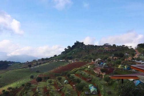 🎉 คนไทยทัวร์ พารับลมชม วิว กินหมูกะทะ ที่ ม่อนอิงดาว รีสอร์ท / Moningdao ,Chiang Mai  📍พักผ่อนด้วยบรรยากาศที่ผ่อนคลาย ท่ามกลางธรรมชาติ แปลงฝักเป็นขั้นบันได และภูเขาที่สวยงาม หลีกหนีความวุ่นวายในตัวเมือง ธรรมดาโลกไม่จำ ความสูงจากระดับน้ำทะเลจะทำให้หมูกระทะอร่อยขึ้น อีกประมาณ2อาทิตย์ดอกไม้จะบานเต็มที่มากกว่านี้ค่ะ สวนใครที่อยากจะชิมสตรอเบอร์รี่สดๆจากสวนอดใจรอช่วง ต้นพย.นี้ได้ชิมกันแน่นอนค่ะ  👉 สถานที่ท่องเที่ยวใกล้เคียงม่อนอิงดาว  📍ปางช้างแม่สา ,ฟาร์มงู ฟาร์ลิง ฟาร์มจระเข้ 📍สวนพฤกษศาสตร์สมเด็จพระนางเจ้าสิริกิติ์  📍ม่อนแจ่ม ,โครงการหลวงหนองหอย 📍คุ้มเสือ  📍โป่งแยกซิปไลน์ และอื่นๆ อีกมากมาย ที่ต้องมาเที่ยว ให้คนไทยทัวร์ดูแล