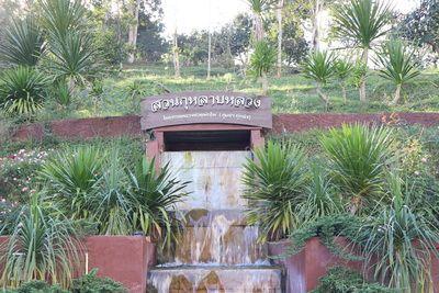 💕Mr Konthaitour พาเที่ยว สวนกุหลาบกว่า 200 ชนิด   ที่ ศูนย์พัฒนาโครงการหลวงทุ่งเริง ณ.ม่อนกุหลาบห้วยผักไผ่ จ.เชียงใหม่