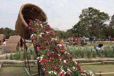 คนไทยทัวร์ พา บุก ถิ่น  คิงคอง ยักษ์  ที่  อ่างเก็บน้ำห้วยตึงเฒ่า  หรือ ทะเลสาบน้ำจืด เชียงใหม่