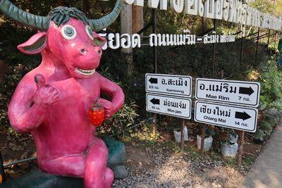 Konthaitour พามาเที่ยว ที่  ไร่สตรอว์เบอร์รีเชียงใหม่