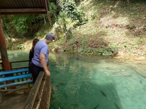 expedia 12 กค 1 day chiangmai chiangdao cave