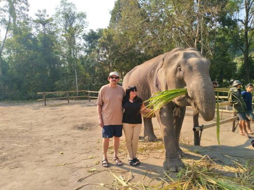 Expedia elephant tour