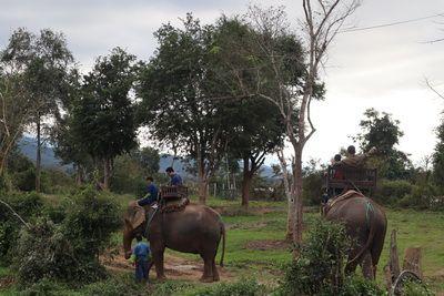 คนไทยทัวร์  พาเที่ยว ที่ แค้มป์ช้าง เมือง หลวงพระบาง , ลาว