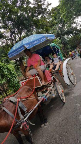 chiang mai amzing trip 5 days 4 night