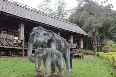 คนไทยทัวร์ แนะนำ    หมู่บ้างช้าง  หลวงพระบาง ประเทศลาว