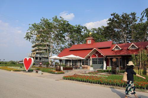 🚩 คนไทยทัวร์ พา Farm Tour นั่งรถราง ชมไร่ชา ที่  ไร่บุญรอด  สิงห์ปาร์ค เชียงราย