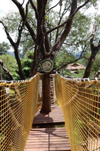 คนไทยทัวร์ พามา เที่ยว ที่  จังเกิ้ลเดอะคาเฟ่ @กื้ดช้าง