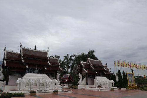☔️💁🏻 ชวนเธอมา ปั่นจักรยานเที่ยวชมสวน ที่ อุทยานหลวงราชพฤกษ์ Royal Park Rajapruek ,Chiang Mai 😘 1 กค– 31 สค เท่านั้น  🌸 แนะนำจุดเที่ยวเพิ่มความโรแมนติก🌸  • ดอกไฮเดรนเยียหลากสี ดอกปทุมมา 30 กว่าสายพันธุ์..ไม้ดอกล้ำค่า • หอคำหลวงที่โอบล้อมด้วยภูเขาเขียวขจี และหลังฝนตกจะมีทะเลหมอกฟ้าหลังฝนอยู่ด้านหลังหอคำหลวง
