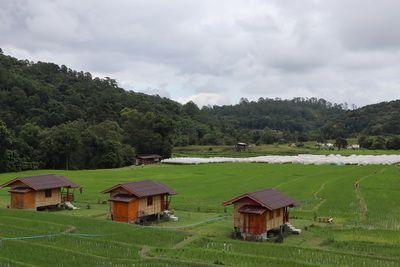 ☘ คนไทยทัวร์ ตามเธอมาเที่ยวชม ทุ่งนาขั้นบันใด และ วิธีการคั่วและบดกาแฟสดๆ ่ที่ หมู่บ้่านแม่กลางหลวง อุทยานแห่งชาติดอยอินทนนท์  ☘ Terraced paddy field surrounding you is being held as one of the ecotourism community destination and enjoy a cup of freshly brewed coffee by the locals Village , Ban Mae Klang Luan at Doi Inthanon National Park, Chiang Mai ☘ คนไทยทัวร์ ตามเธอมาเที่ยวชม ทุ่งนาขั้นบันใด และ วิธีการคั่วและบดกาแฟสดๆ ่ที่ หมู่บ้่านแม่กลางหลวง อุทยานแห่งชาติดอยอินทนนท์  ☘ Terraced paddy field surrounding you is being held as one of the ecotourism community destination and enjoy a cup of freshly brewed coffee by the locals Village , Ban Mae Klang Luan at Doi Inthanon National Park, Chiang Mai
