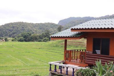 ☘ คนไทยทัวร์ ตามเธอมาเที่ยวชม ทุ่งนาขั้นบันใด และ วิธีการคั่วและบดกาแฟสดๆ ่ที่ หมู่บ้่านแม่กลางหลวง อุทยานแห่งชาติดอยอินทนนท์  ☘ Terraced paddy field surrounding you is being held as one of the ecotourism community destination and enjoy a cup of freshly brewed coffee by the locals Village , Ban Mae Klang Luan at Doi Inthanon National Park, Chiang Mai