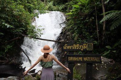 🔸วันหนึ่ง ฉันเดินเข้าป่า เพื่อตามหา น้ำตกสิริภูมิ และ สถานีเกษตรหลวงอินทนนท์ ที่ อุทยานแห่งชาติดอยอินทนนท์ เชียงใหม่  🔹Siripoom Waterfall land of fern and The Royal Agricultural Station Inthanon / Doi Inthanon National Park, Chiang Mai