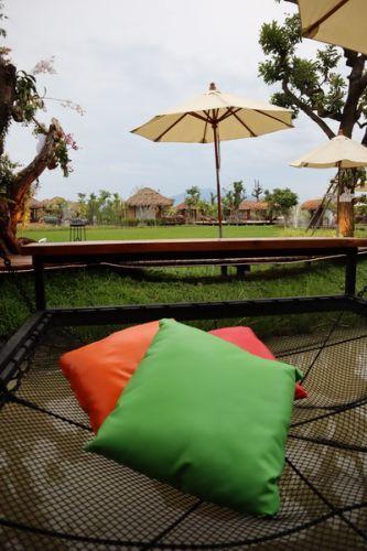 🌺 คนไทยทัวร์ พาเที่ยว ที่ Jungle de cafe,Chinag Mai