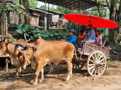 Highlight Tour Package Chiang Mai  3   Days