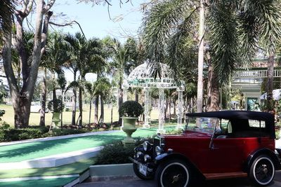 คนไทยทัวร์แวะมารับลมที่ The Consul's Garden เชียงใหม่