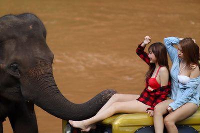 ❤️ Konthaitour Photo Portrait กับ น้องนาย น้องเจน กันที่ สวนสนแม่แตง เชียงใหม่ และ ปางช้าง  ▶️ ขอบคุณนางแบบ : น้องนาย น้องเจน  💎ขอบคุณท่านเจ้าของรถฟอร์ดบรองโคคันงาม : พี่โต  💎ฝากกดไลท์ กดแชร์ ให้กำลังใจกันด้วยครับ  🚩ข่าวประชาสัมพันธ์ : ลูกค้าที่มาเที่ยวมาทัวร์ เชียงใหม่ และอยากถ่ายรูปสวยๆ บอกมาเราจัดให้  หรือ อยากให้น้อง ๆ ที่น่ารักทุกรูปแบบ ทุกแนว มาถ่ายแนว Portrait เราก็มี ภายใต้การดูแลของคนไทยทัวร์  ▶️ฝากกดไลท์ กดแชร์ ให้พลังใจเราหน่อยนะจ้า  🌳🌿🍃🌳🌿🍃🌳🌿🍃🌳🌿🍃🌳🌿🍃🌳🌿 Konthaitour / The Boutique Tour Operator Specialty base in Chiang Mai, Thailand.  🚩 คนไทยทัวร์ / บริษัททัวร์ชั้นนำเชียงใหม่ ทริปส่วนตัวทุกคณะ  ❤️ หากท่าน ชื่นชอบทัวร์ ส่วนตัว และเลือกโปรแกรม สถานที่ท่องเที่ยว เลือกวันเดินทางได้  🔥 หมายเหตุ : ทุกคณะเป็นทริปส่วนตัว ไม่มีทัวร์จอย จ่ายเงินรอบเดียว รวมให้หมดทุกอย่าง  😊 ท่านสามารถปรับแต่งรายการ ระยะเวลาเดินทาง เลือกระดับโรงแรม 3-6 ดาว , ร้านอาหารและอื่นๆ  ได้ตามไลฟ์สไตล์ของตัวเอง ออกเดินทางได้ทุกวัน ควรมี 4 ท่านขึ้นไป จะช่วยหารราคาได้ดียิ่งขึ้น  ✔️โทร : 063-7892562  ✔️อีเมล์ : konthaitour@hotmail.com  ✔️Line id : @konthaitour  ✔️ www.konthaitour.com  #ทริปถ่ายรูปเชียงใหม่ #เชียงใหม่ถ่ายรูป #changmaiphototrip #หาที่ถ่ายรูปเชียงใหม่ #ถ่ายรูปสวยเชียงใหม่ #คนไทยทัวร์