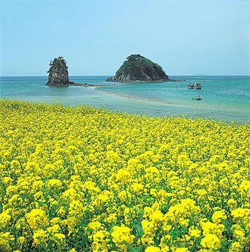 ทัวร์เกาหลี,เที่ยวเกาหลี,เกาหลี,ทัวร์,กรุ๊ปทัวร์,แพ็คเกจทัวร์,โรงแรม,ล่าม,มัคคุเทศก์,ตั๋วเครื่องบิน,การท่องเที่ยว,TourKorea,Tour,Travel Korea,Travel,Group Tour,Package Tour,Guide,Interpreter,Ticket Airway,Ticket Air lan