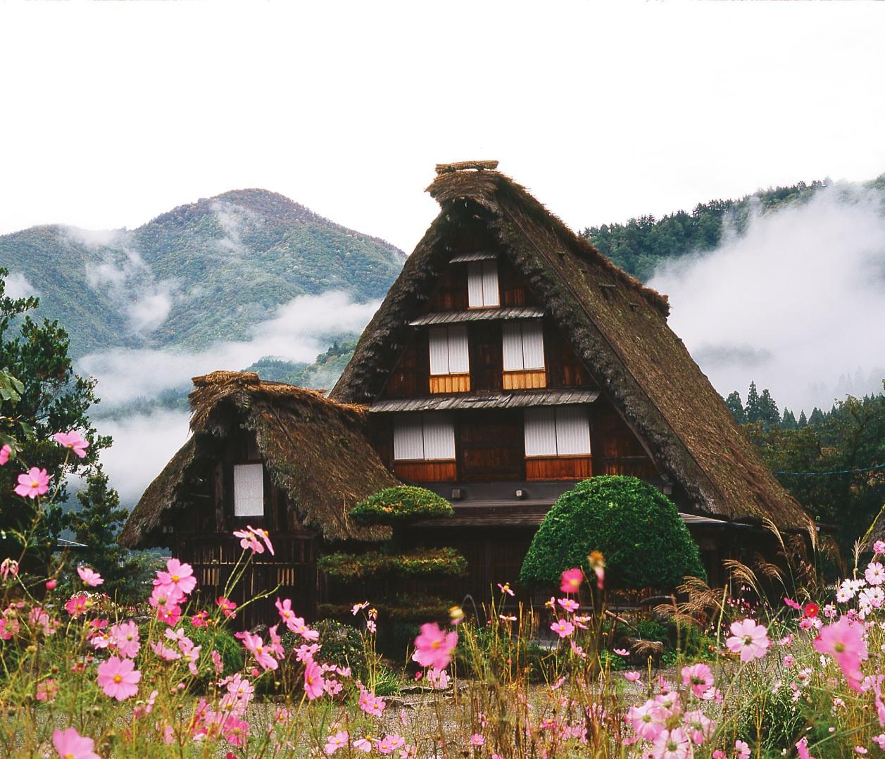 ทัวร์ญี่ปุ่น,เที่ยวญี่ปุ่น,ญี่ปุ่น,ทัวร์,กรุ๊ปทัวร์,แพ็คเกจทัวร์,โรงแรม,ล่าม,มัคคุเทศก์,ตั๋วเครื่องบิน,การท่องเที่ยว,TourJapan,Tour,Travel Korea,Travel Japan,Travel,Group Tour,Package Tour,Guide,Interpreter,Ticket