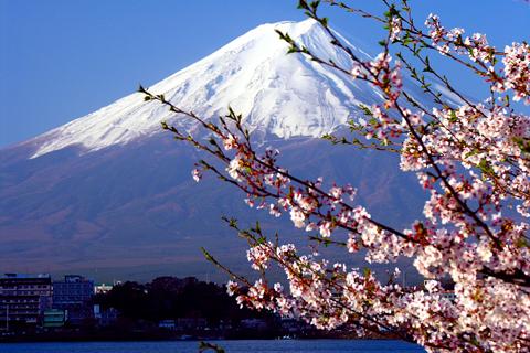 เที่ยวญี่ปุ่น,ทัวร์ญี่ปุ่น,ญี่ปุ่น,ทัวร์,ญี่ปุ่นทัวร์,ญี่ปุ่นเที่ยว,กรุ๊ปทัวร์,แพ็คเกจทัวร์,โรงแรม,ล่าม,มัคคุเทศก์,ตั๋วเครื่องบิน,การท่องเที่ยว,เจแปนแอลป์, JANPAN,japn alps, JAPAN ALPS, TourJapan,Tour,Travel Japan,Travel,Group Tour,Package Tour,Guide,Interpreter,Ticket Airway,Ticket Air lane,สกีรีสอร์ท,ยงเพียง,Autumn,เที่ยวยงเพียงเกาหลี,ทัวร์นามิ,เกาหลีขาปูยักษ์,เกาหลีทัวร์เมียงดง,ทัวร์Korea,ทัวร์โคเรียเซ็นเตอร์แทรเวล,โคเรียเซ็นเตอร์แทรเวล,KOREA CENTER TRAVEL,profressional korea,koreacenterทัวร์,ทัวร์ญี่ปุ่นตะลุยหิมะ,ทัวร์ญี่ปุ่นใบไม้เปลี่ยนสี,ทัวร์ญี่ปุ่นมืออาชีพ,ทัวร์ญี่ปุ่นที่พัก,ทัวร์ญี่ปุ่น ญี่ปุ่น,เที่ยวญี่ปุ่น โคเรียเซ็นเตอร์,เที่ยวญี่ปุ่น6วัน,ที่เที่ยวญี่ปุ่น,ไปเที่ยวญี่ปุ่น, เที่ยวjapan ,เที่ยวเกาหลี japan food, เที่ยวเกาหลีshopping in japan, ข่าวญี่ปุ่น ,ข่าวทัวร์ญี่ปุ่น, ข่าวทัวร์ญี่ปุ่น, คนไทยในญี่ปุ่น ,คนไทยในญี่ปุ่น, ช้อปปิ้งญี่ปุ่น ,ซีรี่ย์ญี่ปุ่น , ทำงานญี่ปุ่น, ทำงานในญี่ปุ่น, รองเท้าญี่ปุ่น, รีวิวญี่ปุ่น, รูปภาพญี่ปุ่น,  ญี่ปุ่น, เครื่องสำอางญี่ปุ่น ,เด็กญี่ปุ่น, เพลงญี่ปุ่น, เรื่องเล่าจากญี่ปุ่น ,เสื้อผ้าญี่ปุ่น , แฟชั่นเที่ยวญี่ปุ่นหน้าหนาว, แฟชั่นญี่ปุ่น, แหล่งช้อปปิ้ง, แหล่งท่องเที่ยว